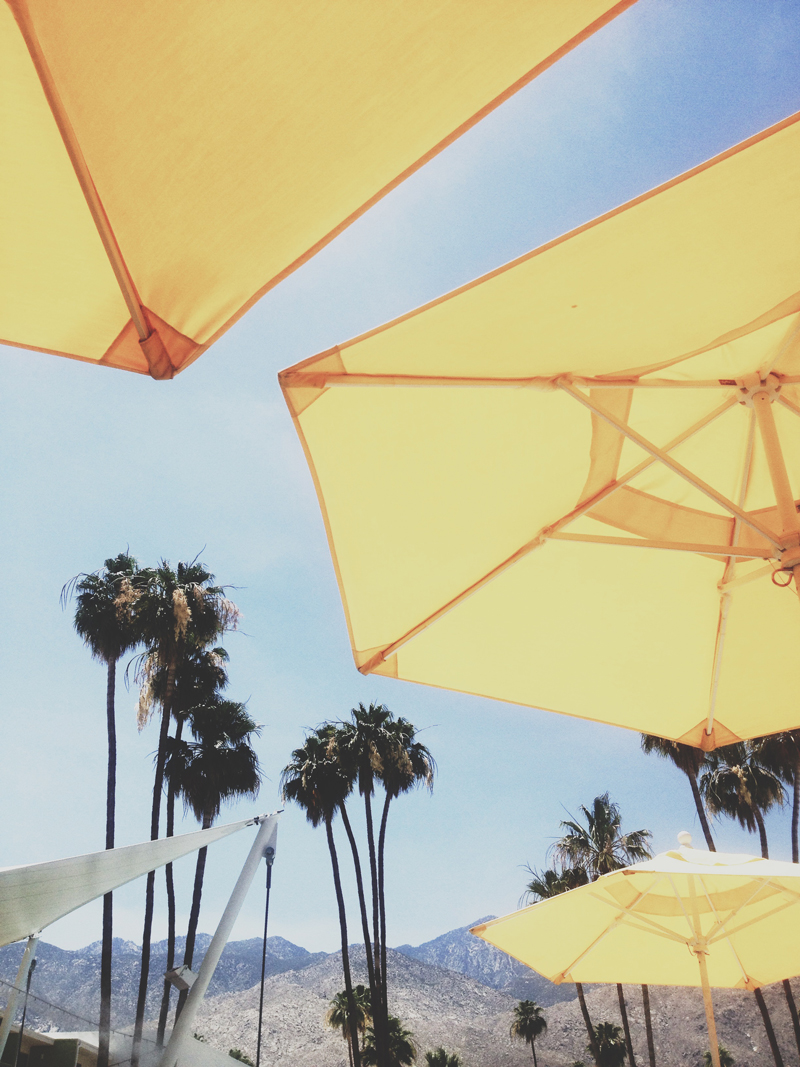 Travel Guide to Palm Springs, California, Ella Frances