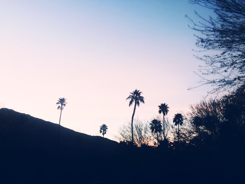 Palm Springs Sunset, Ella Frances